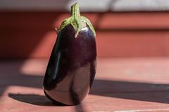 Eggplant Standing