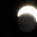 Stellar Anomaly Detected by Brandon_Hilder
