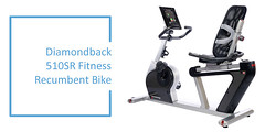 Best Recumbent Exercise Bike : Diamondback-510SR-Fitness-Recumbent-Bike[1]