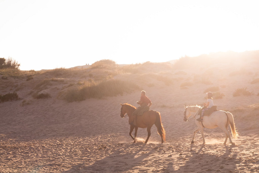 Playa valdevaqueros c dis espanha tripcarta for Camping jardin de las dunas
