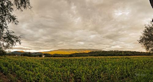 Panorama Remolino FB