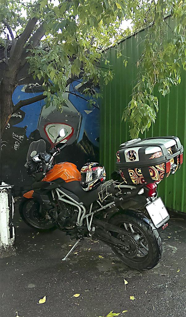 IMAG7282
