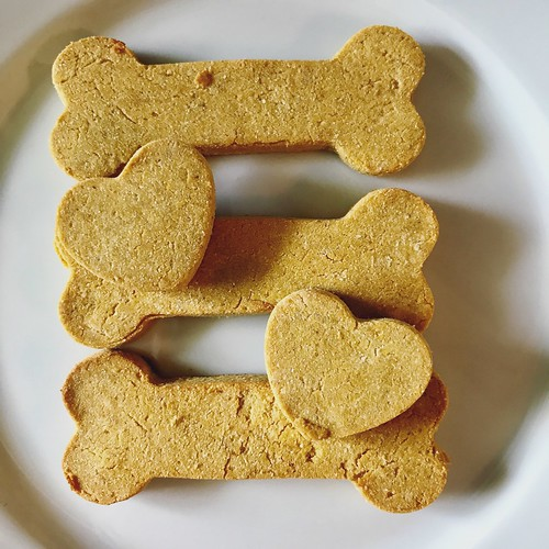 pb, pumpkin, grain-free homemade dog treats #diy #grainfree #dogtreats #homemade