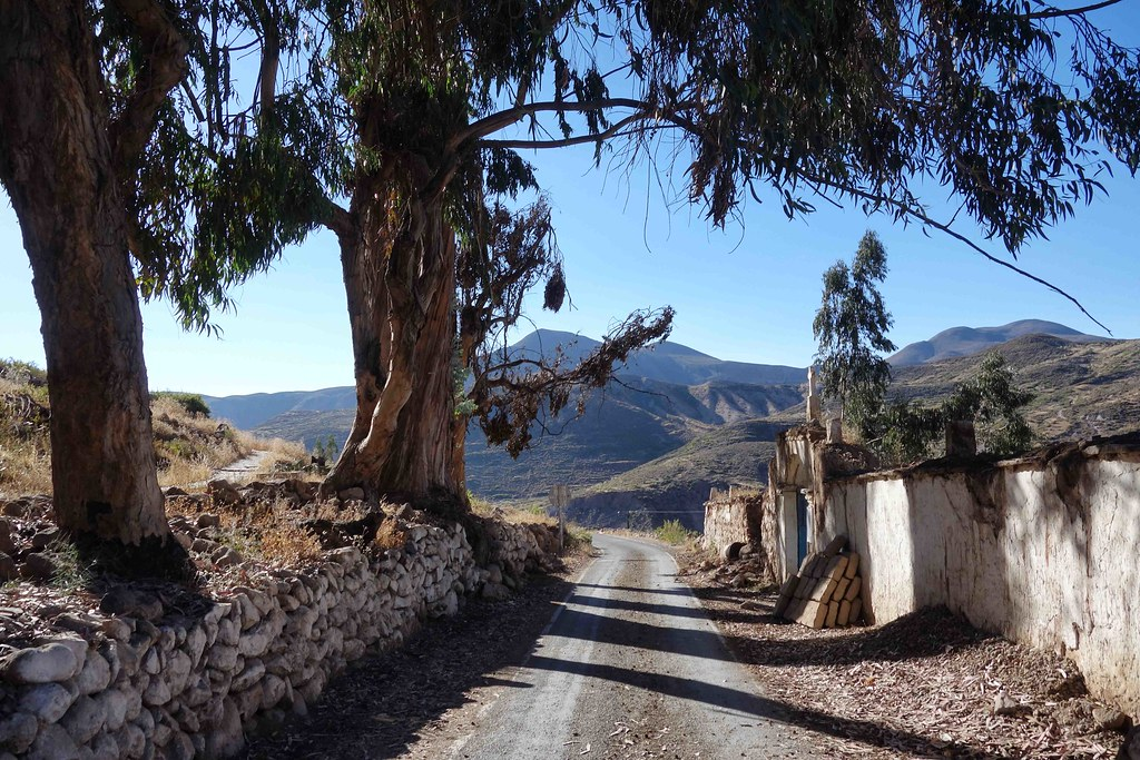 Socoroma - Road