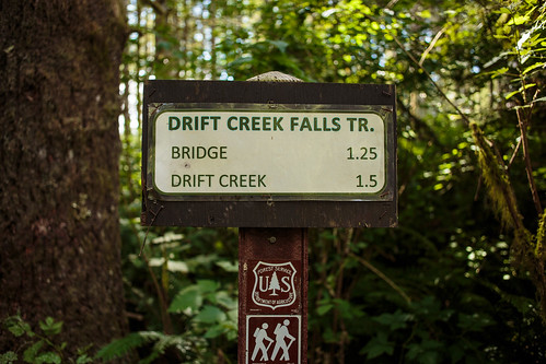Drift Creek Falls-9855