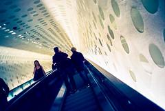 in the tube (1)