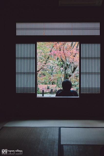 十年,京都四季 | 卷三 | 古都日常 | 02