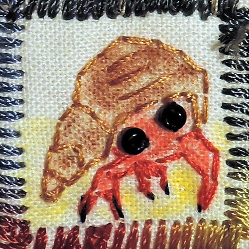 36_hermit_crab
