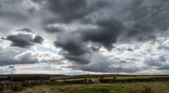 917 moody sky with hay bales