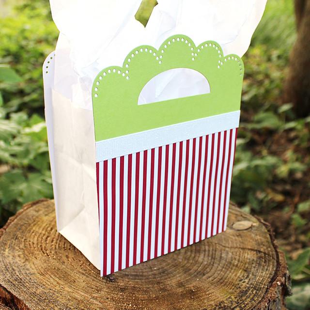 Josie's Gift Bag 6