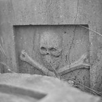 Pirate Bones Detail