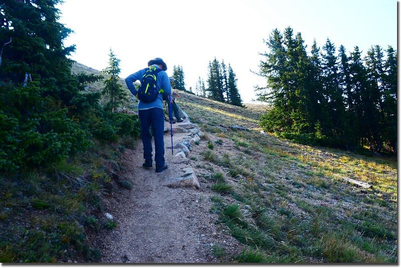 Mount Yale Trail (6)