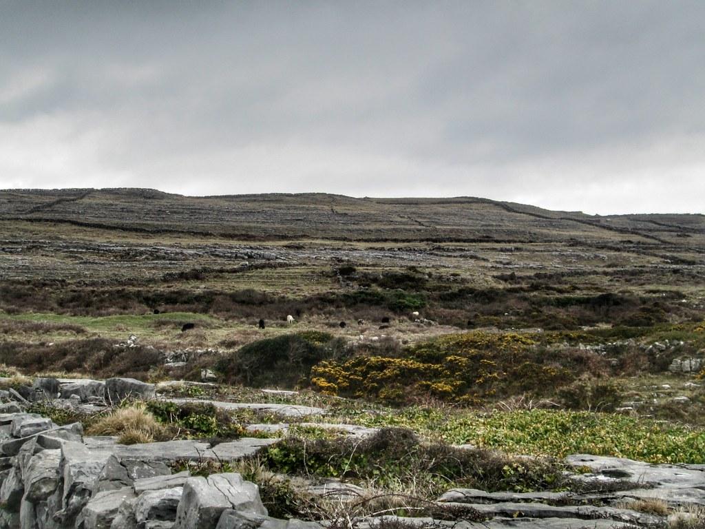 Aran Islands Inis Mor Landscape 1