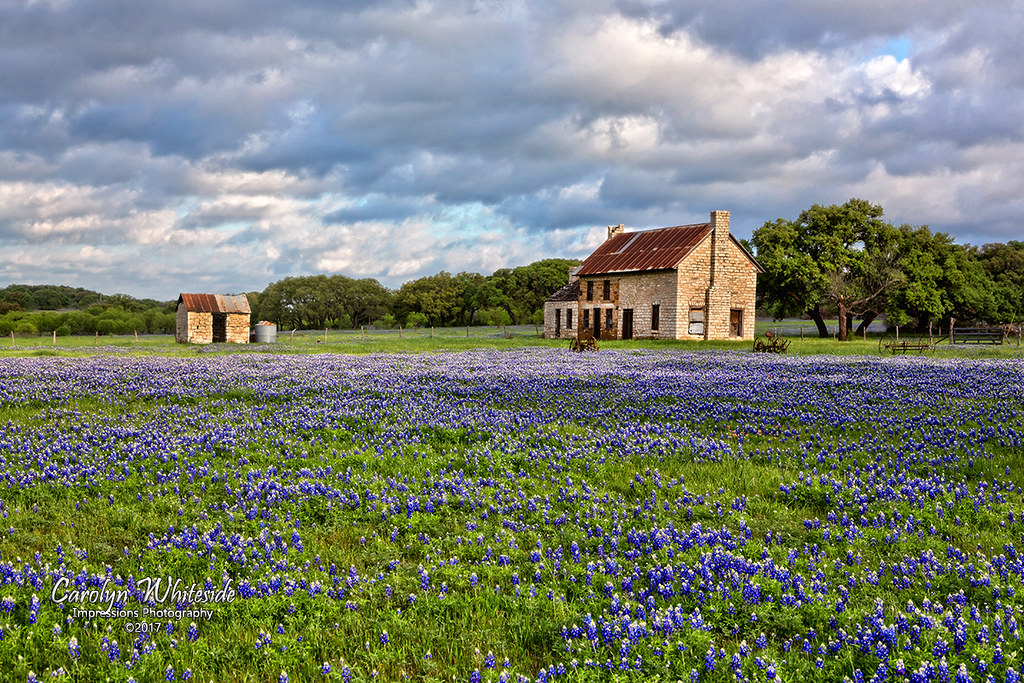 Texas Hill Country Photographs | Fine Art America