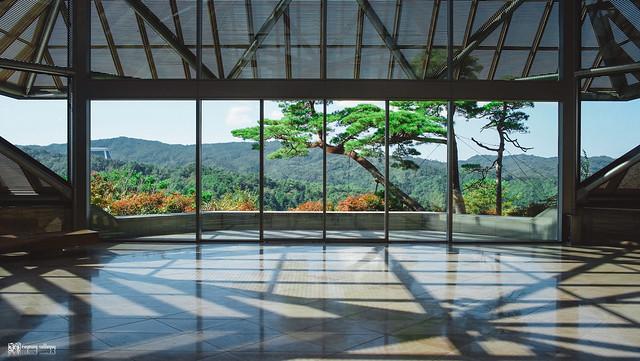 十年,京都四季 | 卷五 | 京都與我,有時還有關西 | 19
