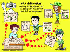 Key biodiversity area (KBA) delineation