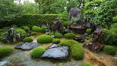Rainy Zen Rock Garden- waterfalls and Mt.Hourai /  Ikkyu-ji Temple