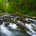 Tanner Creek Green by RobertCross1 (off and on)