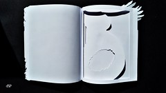 White Book_Nicoleta Faina_81