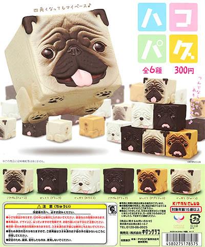 【新增宣傳照片&販售資訊】奇譚俱樂部 「方塊巴哥犬」逗趣又療癒登場! ハコパグ