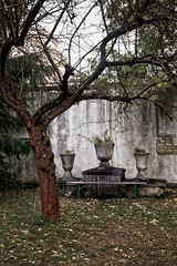 Altar by the tree