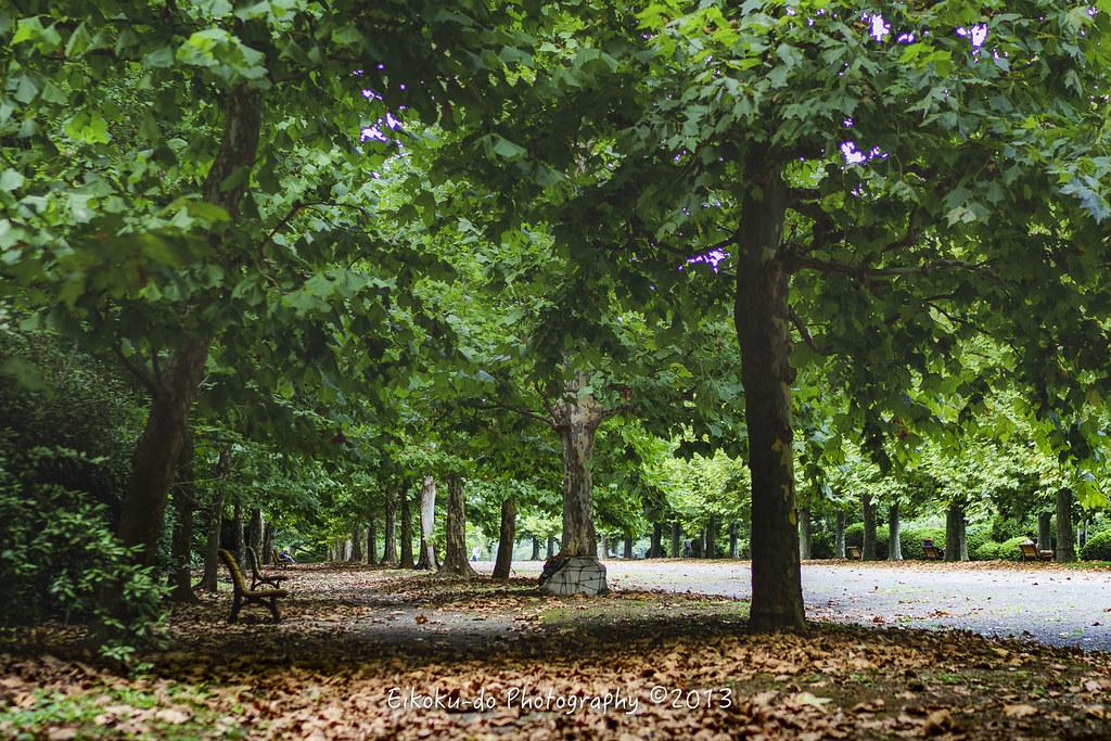 初秋の新宿御苑
