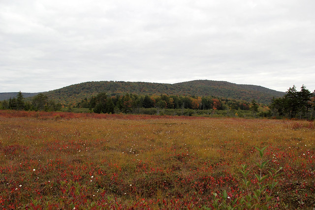 20170916_Cranberry_Wilderness_062