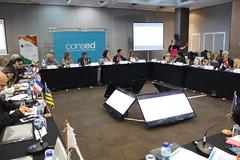 20.09.2017 I Reunião Extraordinária, em Brasília - Manhã