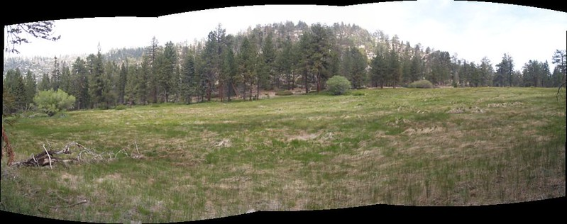 Stitched Panorama of lower Fish Creek Meadows