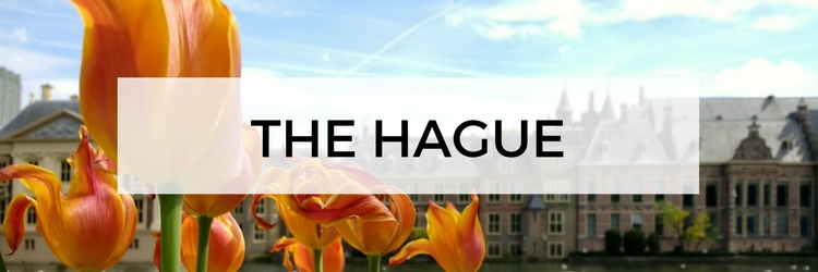 City guide The Hague, plan your trip to The Hague, The Netherlands | Your Dutch Guide