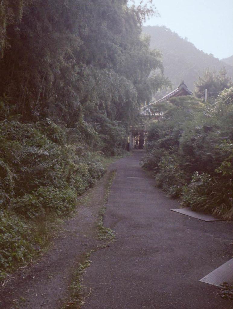 color-19832-3.jpg