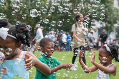 They came for the eclipse, but they stayed for the bubbles