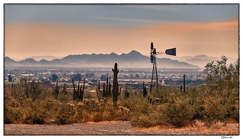 whitetankmountainregionalpark whitetankmountains phoenix maricopacounty arizona nikon d800 mountains southwest cactus