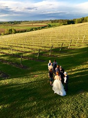 Vineyard wedding. Port Williams, NS. June 2017.