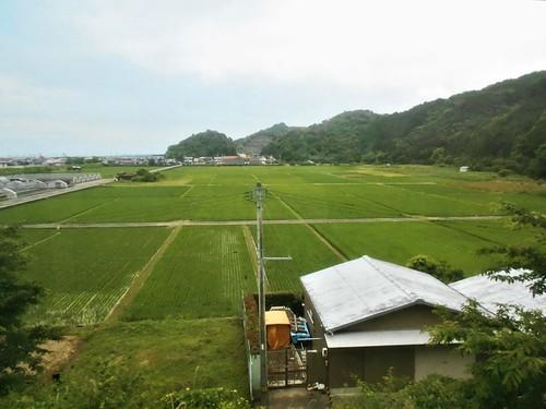 jp-Kannoura-Tokushima-train (2)