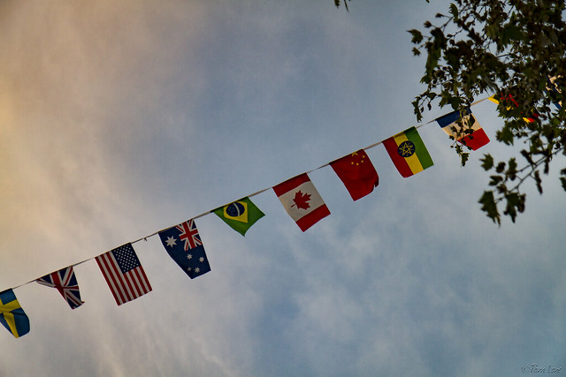 Downey International Food and Music Festival flags