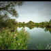 Rickmansworth Lakes-1