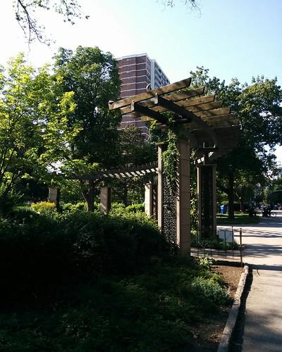 #toronto #allangardens #green #parks #greenhouse