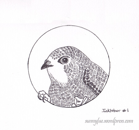 prompt swift bird inktober 2017