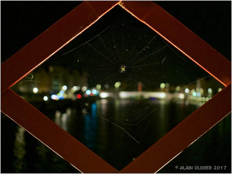 Entre Parc de la Tête d'Or et Vieux Lyon 36860381351_5e9788ae90_b