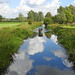 The River Chelmer navigation near Little Baddow lock, Essex