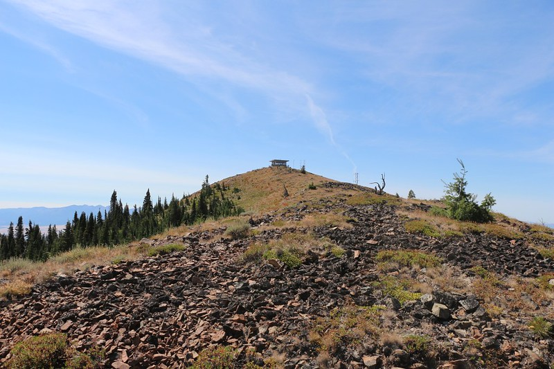 Looking back up at the Dixie Butte Lookout Tower from forest road NF2610