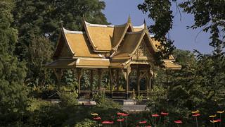Olbrich Botanical Gardens 13