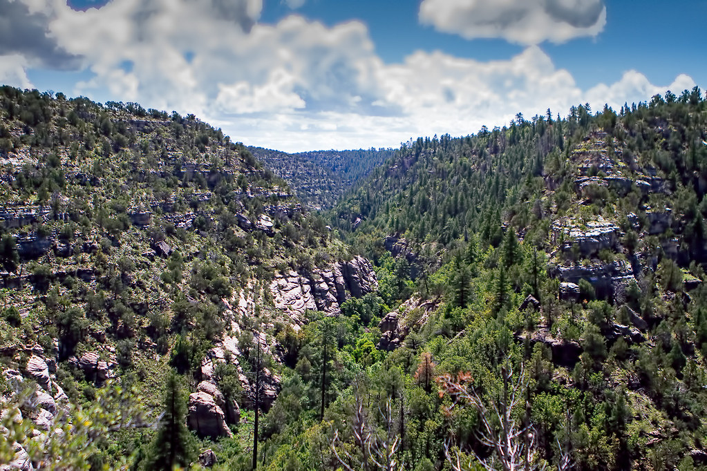 Walnut-Canyon-31-7D1-081317