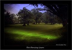The Dancing Lawn