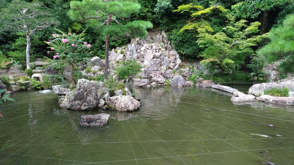 清荒神 池