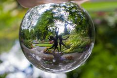 Arboretum in a Ball