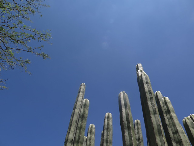 Sky at Vizarron de Montes, Queretaro