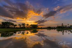 Florida Life: Fairway To Heaven