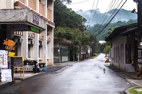 猴硐貓村 - Taiwan Cat Village